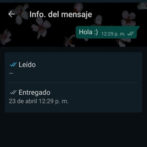 WhatsApp in seen exact time trick